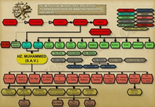 Hz Muhammed'in Soy Ağacı