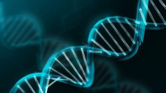 Çağımızın Bilim Adamlarının Yaratıcı ve Yaratılış Hakkında Düşünceleri