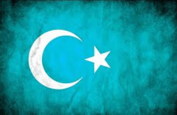 Ah Doğu Türkistan