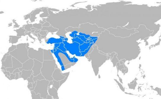 Selçuklu İmparatorluğu'nun 976.yılı Kutlu Olsun