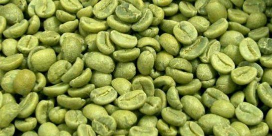 Yeşil Kahveyi Biliyormusunuz?