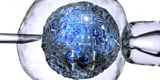 Böbrek Hücresi Bilgisayara Dönüştürüldü