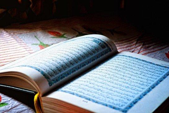 Hz. Ali Hakkında Bilgi