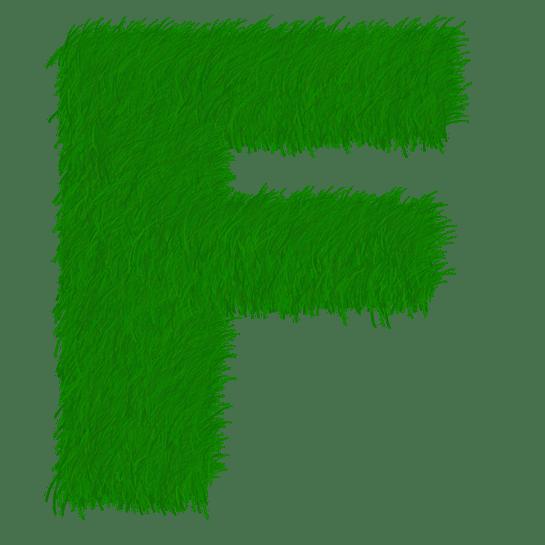 F Harfi İle Başlayan Bileşik Kelimeler (172 Kelime)
